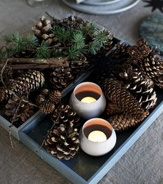 Gå en hyggelig tur i skoven, saml fine grankogler Christmas Trends, Nordic Christmas, Christmas Mood, Christmas Inspiration, Xmas, Christmas Candle Decorations, Christmas Candles, Holiday Decor, Natural Christmas