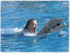Swim with dolphins at Discovery Cove!
