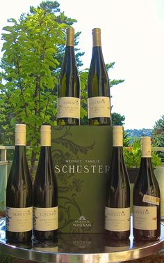 Genüssliche Gedanken & mehr ...: Weingut Familie Schuster