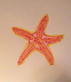 Whimsical Sea Star II from Whimsyville