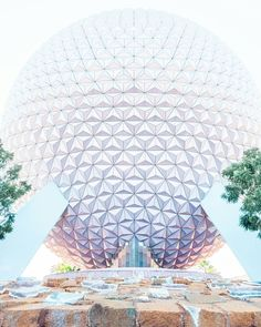 Possibly the best picture of Spaceship Earth I've ever seen! How incredible is this! via Walt Disney World I Disney Pictures I Beautiful Disney I Pictures of Disney I Epcot Ball World Pictures, Disney Pictures, Sea World, Disney Vacations, Disney Trips, Disney Travel, Disney Love, Disney Magic, Magic Kingdom