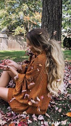 Fall vibes & thick, voluminous ponytail with Luxy Hair extensions in Blonde Balayage @alexcentomo