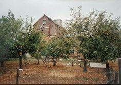 De Maalderij em de beruchte (waakzame) ganzen!  De foto is vanaf de Jacobsonstraat/Nijverdalsestraat genomen in de jaren '80! Nu staat het gebouw van SWWE er.