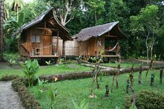 Book the cheapest rates in ♥♥Nipa Hut Village Bohol♥♥. Pay at Hotel allowed. Bahay Kubo, Low Cost Housing, Farm Projects, Surf Shack, Farm Stay, Eco Friendly House, Hostel, Oh The Places You'll Go, Play Houses