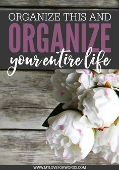 Organize This One Thing and Organize Your Entire Life!