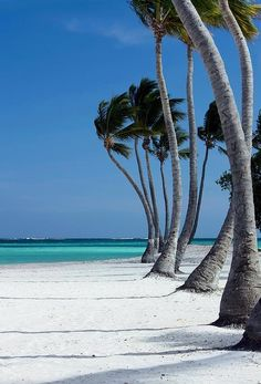 Cap Cana - Dominican Republic