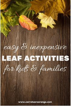 Check out these fun, easy, inexpensive, and amazing Leaf Activities perfect for your home and classroom! Lots more goodness on this blog! via @marniecraycroft