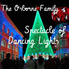 Thanksgiving at Disney: A Trip Report - Day 4 - The Osborne Family Spectacle of Dancing Lights in Disney's Hollywood Studios at Walt Disney World.