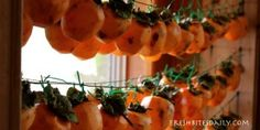 Food preservation how-to