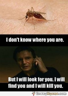 When I get bit by a mosquito | Funny Pictures, Quotes, Photos, Pics, Images. Free Humorous Videos and Facebook Covers