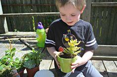 Succulent Planting #DIHWorkshop