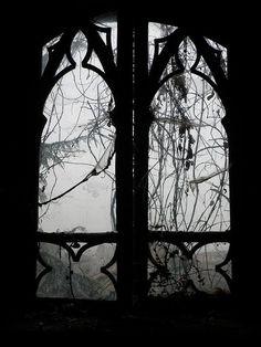 © Jonny D.G  Inverno Gotico, 2010  http://www.flickr.com/photos/26847596@N05/