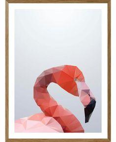 Flamingotjoh