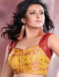 Bollywood Choli Blouse Designs