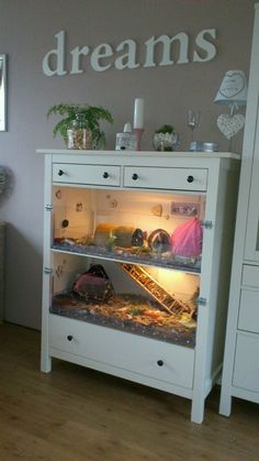 Great idea for a guinea pig cage to make it match a room better. Especially if the dresser can be found at a garage sale and repurposed!