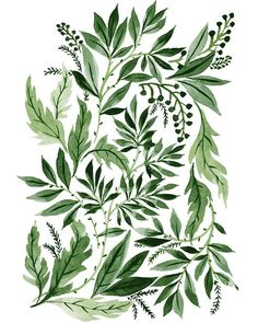 Green Leaves, an art print by Vikki Chu Art And Illustration, Pattern Illustration, Illustrations, Botanical Illustration, Motif Floral, Arte Floral, Foto Poster, Print Poster, Botanical Art