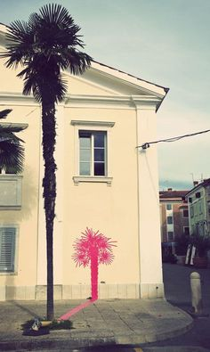Palm Tree with Pink Shadow
