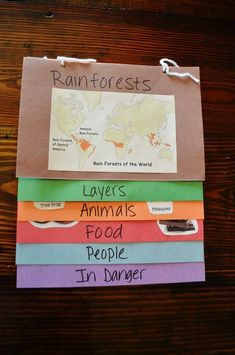 I like this idea for a Rainforest flip book Rainforest Classroom, Rainforest Crafts, Rainforest Activities, Rainforest Project, Rainforest Theme, Amazon Rainforest, Rainforest Habitat, Rainforest Ecosystem, Brazil Rainforest
