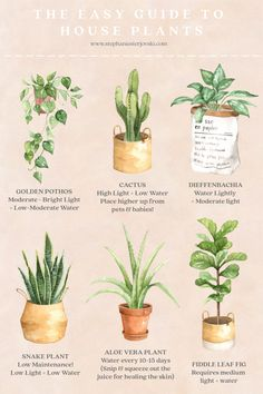 house plants An Easy Guide to House Plants Landscaping Tips- the Water Garden Article Body: There ar Real Plants, Water Plants, Growing Plants, Easy House Plants, House Plants Decor, Indoor Garden, Outdoor Gardens, Easy Care Indoor Plants, Wallpaper Collage