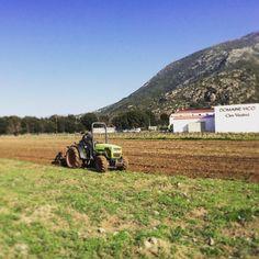Dernière préparation de terrain avant la plantation ! #domainevico #plantation