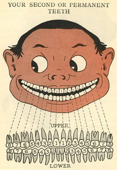 Harrison Wader Ferguson, A Child's Book of the Teeth, Illustrated by the Author, originally published 1918