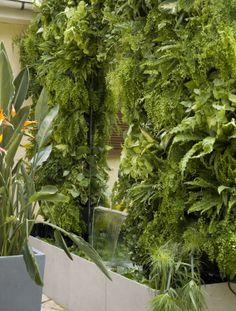 Panel modular para muro vegetal