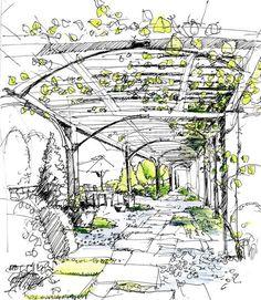 Ben Young Landscape Architect
