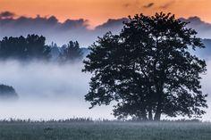 Fotostrecken - Wetter Bilder und Fotos - WetterOnline Fast schon herbstlich: In den Frühstunden wabern wie hier an der Lahn ein paar Nebelbänke herum. Bild: Christoph Weber