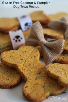 Perfect for dogs who can't eat gluten, this recipe combines pureed pumpkin with coconut flour for a treat that's easy on the tummy.