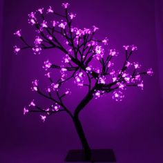 Purple Blossoms  This is so pretty! I would love this light thing for my bedroom