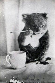 Аристократ в 10-м поколении или горячий чай с ложечки, 1900 г. https://vk.com/wall-44952891_91045
