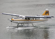 The seaplane project might have to drop one location from its priority circuit as an 11kV power line runs across the Mattupetty dam in Munnar. The Kerala Tourism Infrastructure Limited has requested power distributor M/s Tata Tea Ltd to decommission the line and locate it elsewhere.