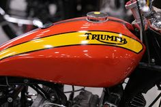 Triumph Motorcycles, Vintage Motorcycles, Custom Motorcycles, Custom Bikes, Indian Motorcycles, Bobber Motorcycle, Motorcycle Leather, Motorcycle Style, Motorcycle Quotes