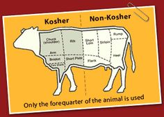 "Kosher meat, good to know. Even if you aren' t Jewish this is a good depiction to show others who don't know much about Kosher meats. I never heard of ""Tri-tip"" until I moved to California; it is part of the flank. Not kosher."
