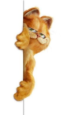 Peek A Boo Garfield