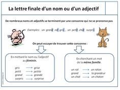 Leçons CE2 orthographe - Loustics