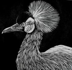 African Crowned Crane Linocut by Rowanne Anderson Kratz Kunst, The Artist's Way, Scratchboard Art, Scratch Art, Linoprint, Wood Engraving, Linocut Prints, Woodblock Print, White Art