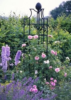 Climbing pink rose for my round periwinkle baker's rack!