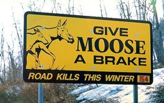 picture of Glenn Highway Winter Moose Kill Sign Alaska USA Image