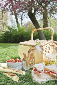 (Closed||Evie) Going on a picnic with Brandon!