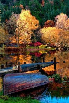Vibrant autumn lake scene plus other gorgeous nature shots Fall Pictures, Pretty Pictures, Autumn Photos, Fall Pics, Beautiful World, Beautiful Places, Beautiful Scenery, Simply Beautiful, Beautiful Photos Of Nature