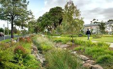 Architecture Images, Architecture Awards, Landscape Architecture, Park Landscape, Landscape Design, Rain Garden Design, Orchard Design, North Garden, Urban Design Diagram