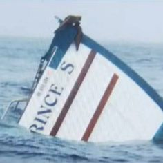 Mark and Cynthia Schneider survived when their tuna boat, the 60-foot Sea Princess, sank off the coast of Oregon, and their cats Jasper and Topaz also survived.