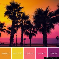 Sunset | Palm Trees | Vacation Goals |Color Palette Inspiration. | Digital Art Palette And Brand Color Palette.