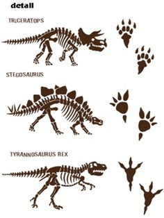 Your child will love these Dinosaur Bones and Tracks wall decals stickers. Dinosaur Tracks, Dinosaur Bones, Dinosaur Life, Dinosaur Art, Dinosaur Tattoos, Dinosaur Activities, Dinosaur Skeleton, Kids Corner, Wall Decal Sticker