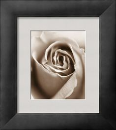 AllPosters - Heart of the Rose  Art Print - 24 x 30 cm  Sue Kennedy