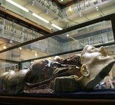The Gordon Museum of Pathology, King's College London. I MUST GO HERE SOMEDAY.