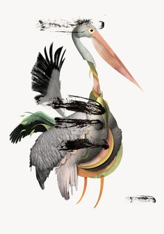 © superexpresso - Big Incredibly Colored Winged Animals