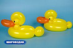Утка из двух шаров Duck of two balloons