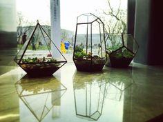 #joycity #plantingdesign